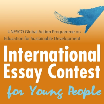 EssaysCapital International Essay Writing Contest      Naval Institute